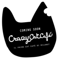 For Pet Lovers: Cat Café's in Italy