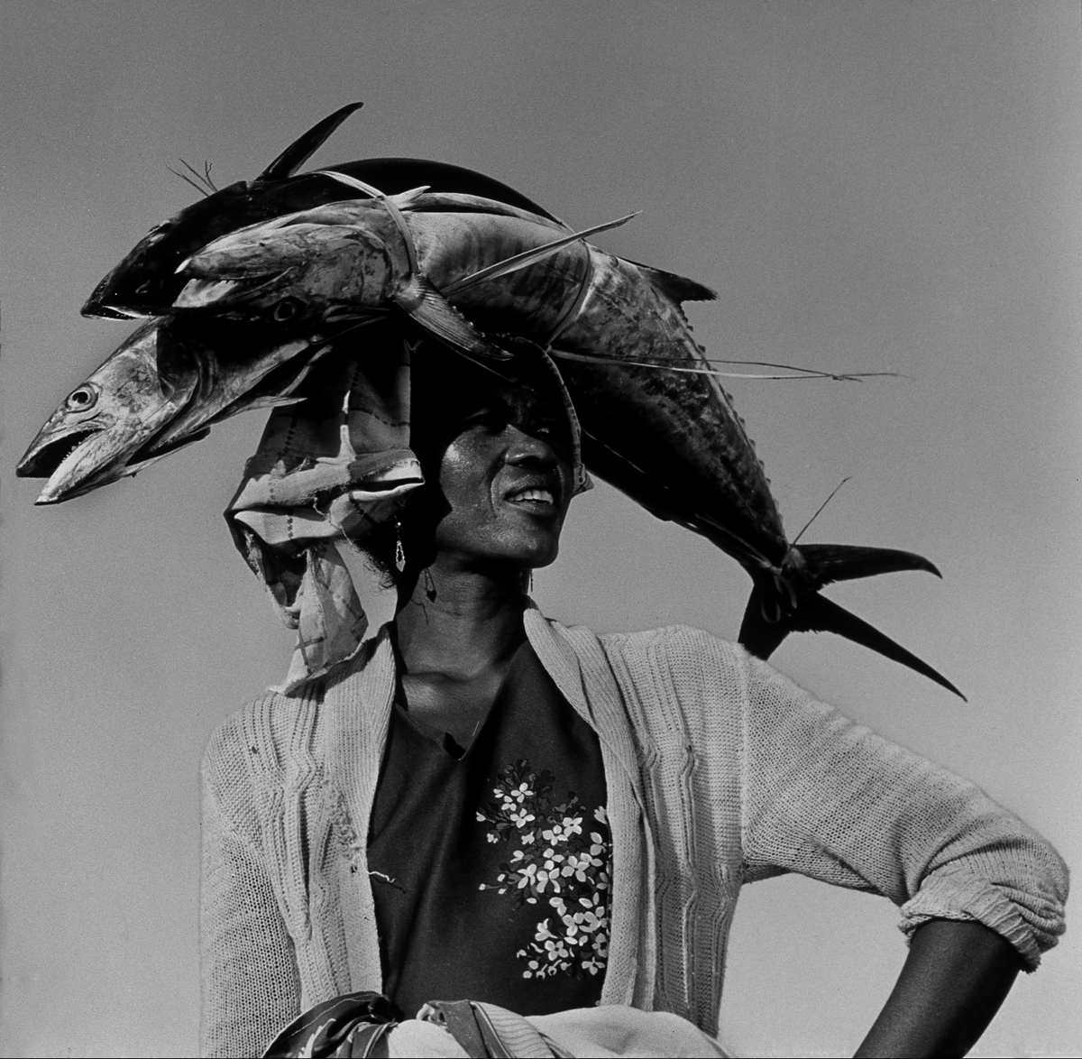 fashionplate_05_mada_001_fishing_fruits-de-mer