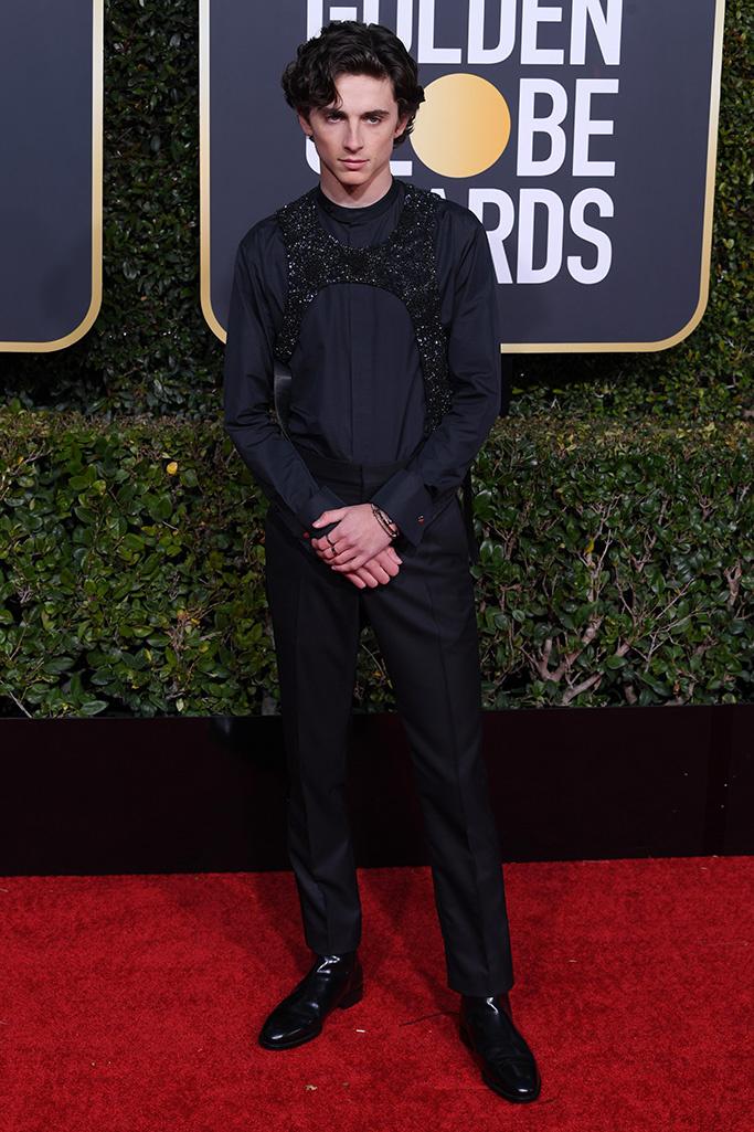 Timothee Chalamet at the Golden Globe awards (photo: David Fisher/Shutterstock)