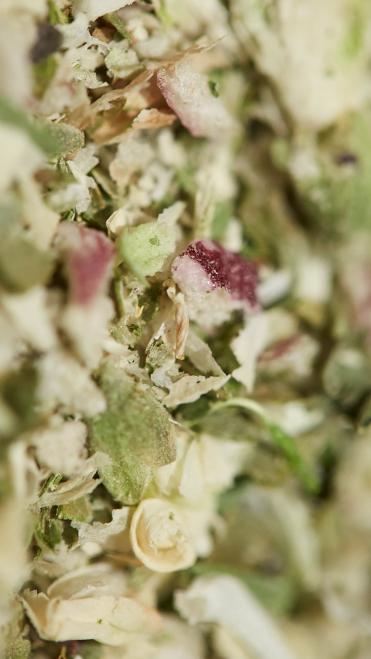 Dried Herbs (photo: courtesy Pitti Taste)