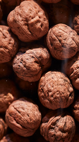 Walnuts in the Shell (photo: courtesy Pitti Taste)