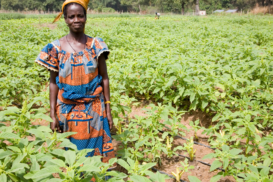 Woman from the Kalalé District of Benin, West Africa in a traditional Ankara print dress. (photo: self.org)