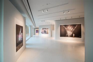 Shok-1's Street X-Rays exhibition at the Bally Ginza flagship store, Tokyo, Japan. (Courtesy photo)