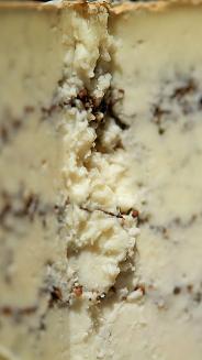 Gorganzola Cheese Center (photo: courtesy Pitti Taste)